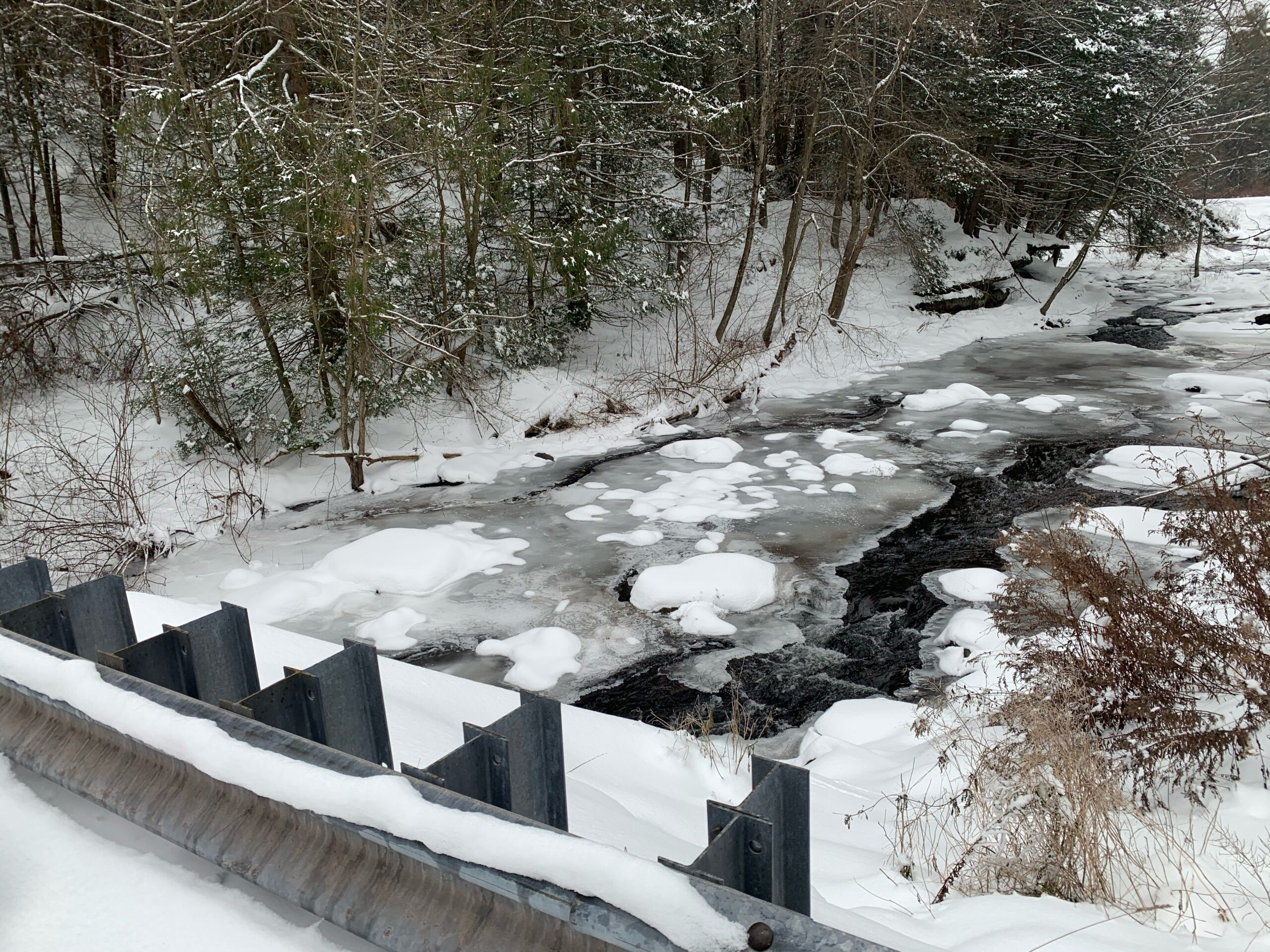Winter conditions at local streams